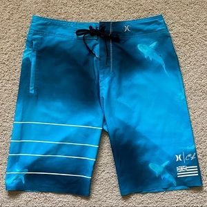 Hurley Shorts - ✨RARE✨Hurley x Clark Little Board Shorts | Size 29